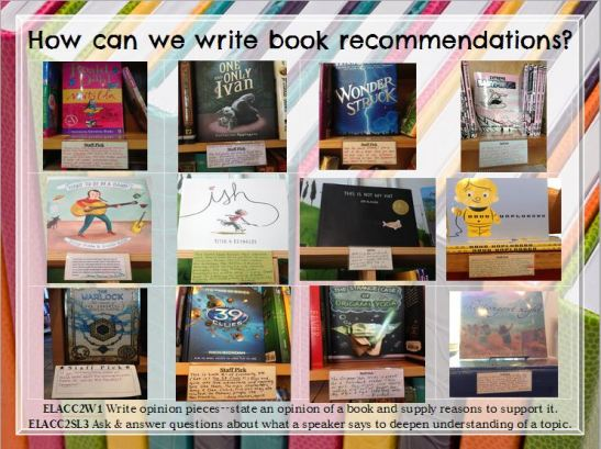 Rachel sent a great variety of picture books, chapter books, graphic novels, newer books and old favorites!